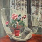 Bouquet de cyclamens au papier cristal © ADIN